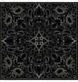Color ornament on black background vector image