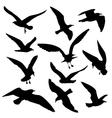 Flying birds black silhouettes set vector image