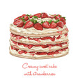 Delicious creamy cake with strawberries vector image
