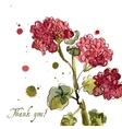 Watercolor blooming geranium vector image