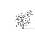 Drawing of beautiful flower vector image