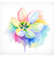 Beautiful flower watercolor painting mesh vector image