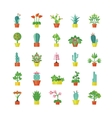 House Plants Flat Icons Set vector image
