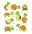 cartoon funny turtle set for label design vector image