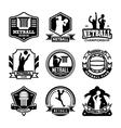 Netball Badges vector image