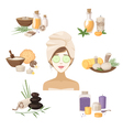 Spa Beauty Elements vector image