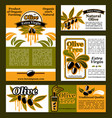 banners and poster for olive oil poducts vector image