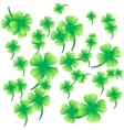 Leaves of clover on a white background vector image