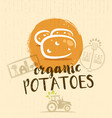 local farm potato hand drawn organic vegetable vector image