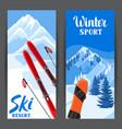 winter ski resort banners beautiful landscape vector image