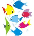 set of reef fish vector image