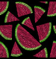 seamless watermelon pattern scratched fruits vector image
