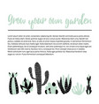 cacti banner vector image