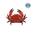 crab in cartoon style on a white background vector image