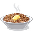 boiled buckwheat porridge vector image vector image