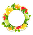 citrus fruits slices arrangement round frame vector image