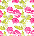 Rough brush pink rose flowers in green vine vector image