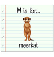 Flashcard letter M is for meerkat vector image