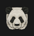 head of panda bear face of wild animal hand drawn vector image
