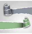 Ripped paper banners vector image