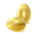 golden eggs vector image