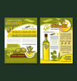 olive oil poster template for healthy food design vector image