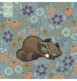 Funny little raccoon sleeping in a meadow vector image