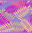 tropical summer jungle palm tree leaf background vector image