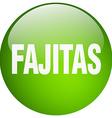 fajitas green round gel isolated push button vector image