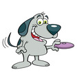 Cartoon dog holding a flying disk vector image