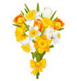 daffodils and tulips vector image