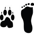 dog and man footprints vector image vector image