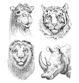 set of safari head animals black and white sketch vector image