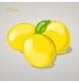 Cartoon sweet lemon on grey background vector image