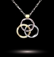 darkness and jewelry pendant vector image