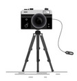 retro photo camera on tripod isolated on white vector image