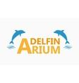 Dolphinarium logo vector image
