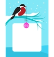 red chect bird on branch with snow vector image vector image