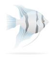 aquarium fish 03 vector image vector image