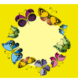 Butterflies Frame vector image vector image