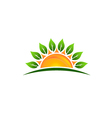 Sun with leaves image vector image vector image