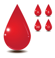 Blood drop isolate on white back ground vector image