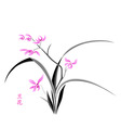 orchid blossom vector image