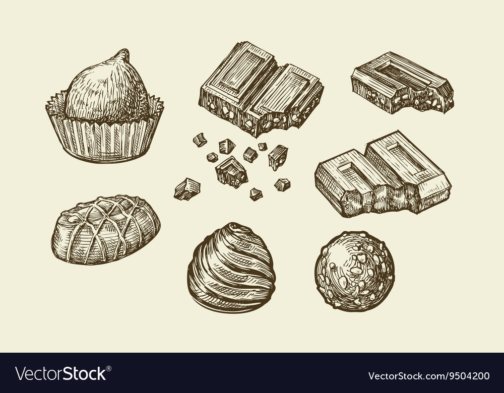 Chocolates hand drawn sketch sweets caramel vector