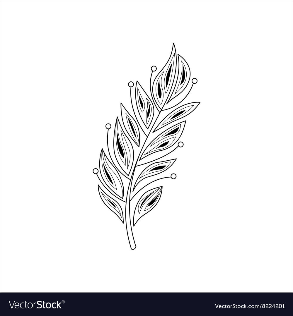 Vaned feather zentangle for coloring vector