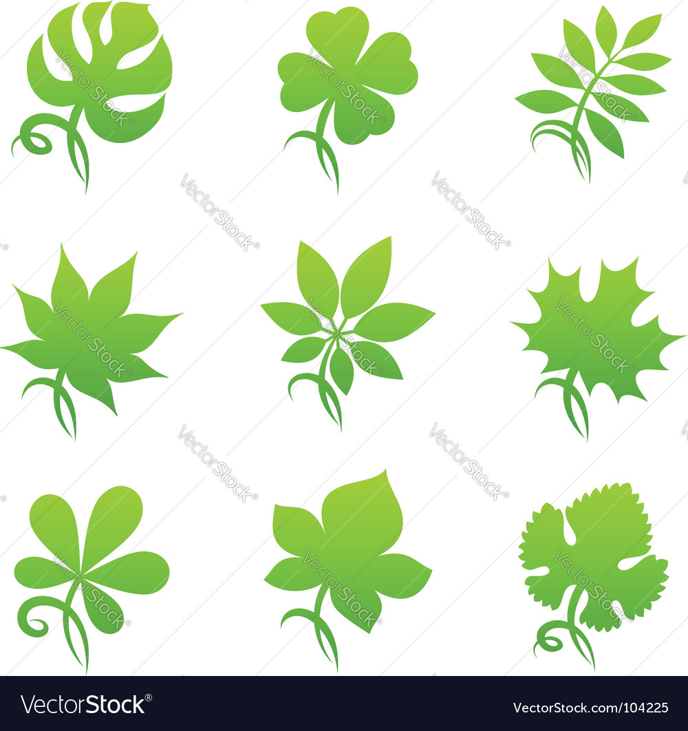Leaves elements for design vector