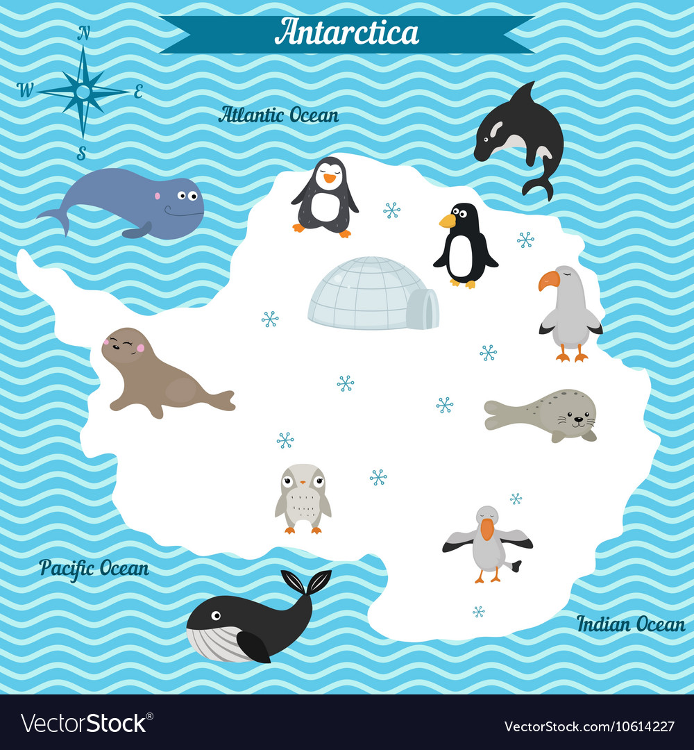 Map of antarctica continent with different animals vector