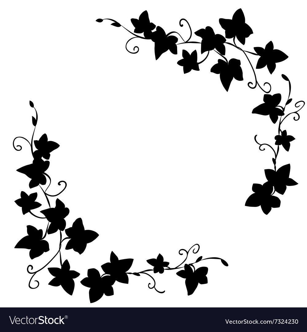 Black doodle ivy leaves pattern vector