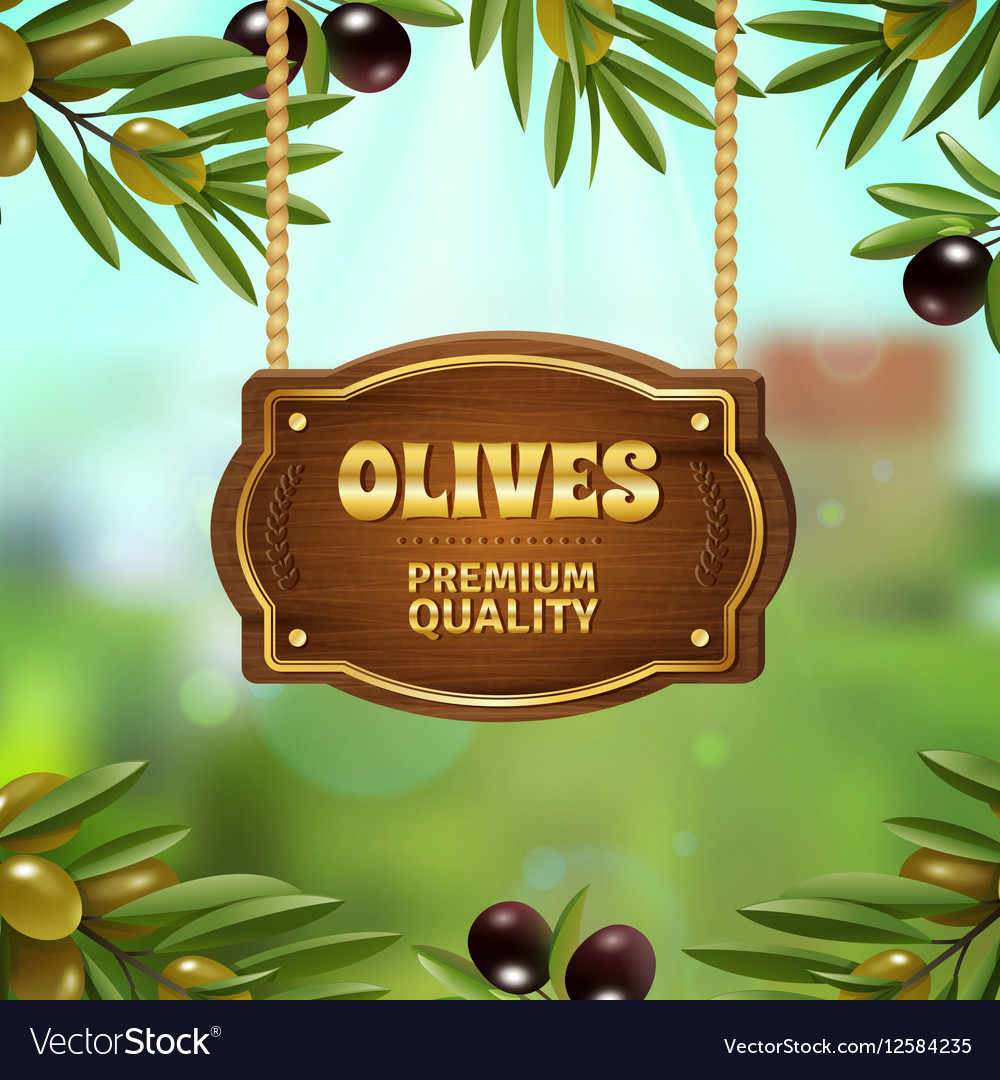 Premium quality olives background vector