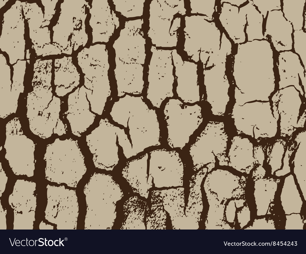Bark close up texture grunge abstract background vector